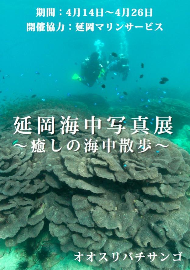 延岡海中写真展 〜癒しの海中散歩〜